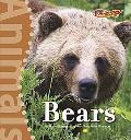 Bears (Benchmark Rockets: Animals)