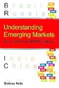 Understanding Emerging Markets Building Business Bric by Brick