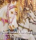 Carousel Horses: A Photographic Celebration - Sherrell S. Anderson - Hardcover - Special Value