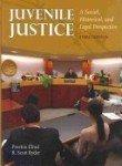 Juvenile Justice: A Social, Historical and Legal Perspective, Third Edition