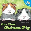 Let's Take Care of Our New Guinea Pig