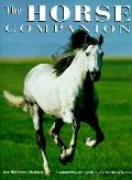 Horse Companion A Comprehensive Guide to the World of Horses, Including All You Need to Know...