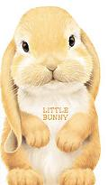 Little Bunny (Look at Me Books)