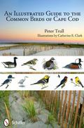 Illustrated Guide to the Common Birds of Cape Cod