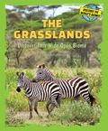 Grasslands : Discover This Wide Open Biome