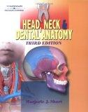Head, Neck, and Dental Anatomy