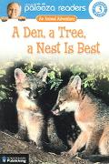 Den, a Tree, a Nest Is Best