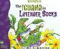 Iguana in Lavender Socks