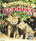 Changing Seasons