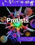 Protists: Algae, Amoebas, Plankton, and Other Protists (A Class of Their Own)