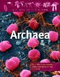 Archaea (A Class of Their Own)