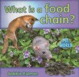What Is a Food Chain? (Bobbie Kalman's Leveled Readers: My World: H)