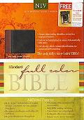 Standard Full Color Bible NIV Duo Tone Leather