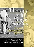 Therapy With Single Parents A Social Constructionist Approach