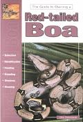 Guide to Owning a Red-Tailed Boa