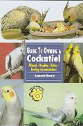 Guide to Owning a Cockatiel Ailments, Breeding, History, Feeding, Accommodations