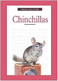 New Owner's Guide to Chinchillas