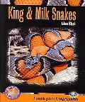 King & Milk Snakes