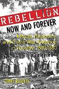 Rebellion Now and Forever: Mayas, Hispanics, and Caste War Violence in Yucatan, 1800?1880