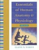 Essentials of Human Anatomy and Physiology (6th Edition)