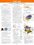 Biology - Study Card - Neil A. Campbell - Paperback