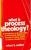 What Is Process Theology? - Robert B. Mellert - Paperback
