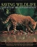 Saving Wildlife: A Century of Conservation - Donald Letcher Goddard - Hardcover