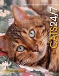 Cats 24/7 Amazing Photographs Of Extraordinary Cats