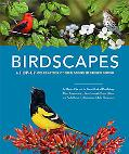 Birdscapes: A Pop-Up Celebration of Birdsongs in Stereo Sound