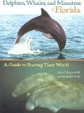 Dolphins, Whales, and Manatees of Florida A Guide to Sharing Their World