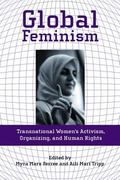 Global Feminism Transnational Women's Activism, Organizing and Human Rights