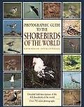 Photographic Guide to the Shorebirds of the World - David Rosair - Hardcover