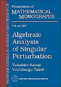Algebraic Analysis of Singular Perturbation Theory