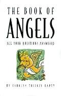 The Book of Angels: All Your Questions Answered