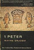 First Epistle of Peter An Introduction and Commentary