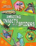 Amazing Spiders and Insects