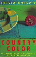 Tricia Guild's Country Color, Vol. 1 - Tricia Guild - Hardcover