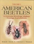 American Beetles Archostemata, Myxophaga, Adephaga, Polyphaga  Staphyliniformia
