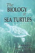 Biology of Sea Turtles