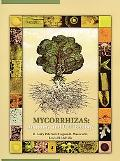 Mycorrhizas Anatomy and Cell Biology