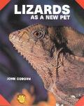 Lizards As a New Pet