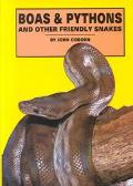 Boas & Pythons and Other Friendly Snakes