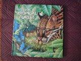 Explore a Tropical Forest, Pop-up Book