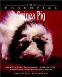 The Essential Guinea Pig (The Essential Guides)
