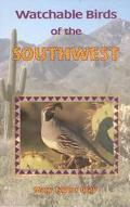 Watchable Birds of the Southwest