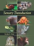 Sensory Transduction
