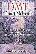 Dmt The Spirit Molecule  A Doctor's Revolutionary Research into the Biology of Near-Death an...