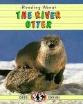 Reading about the River Otter