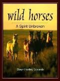 Wild Horses: A Spirit Unbroken
