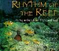 Rhythm of the Reef: A Day in the Life of the Coral Reef - Rick Sammon - Hardcover